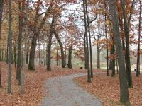 Paved Trails