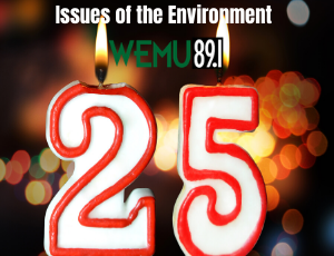 IssuesOfTheEnvironment-25years-candles