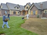 Workers installing sod on a front lawn